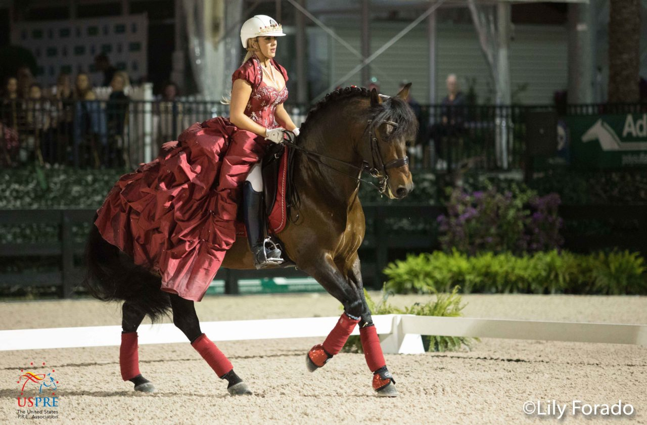 The Majesty Of The Pure Spanish Horse Throughout The Ages